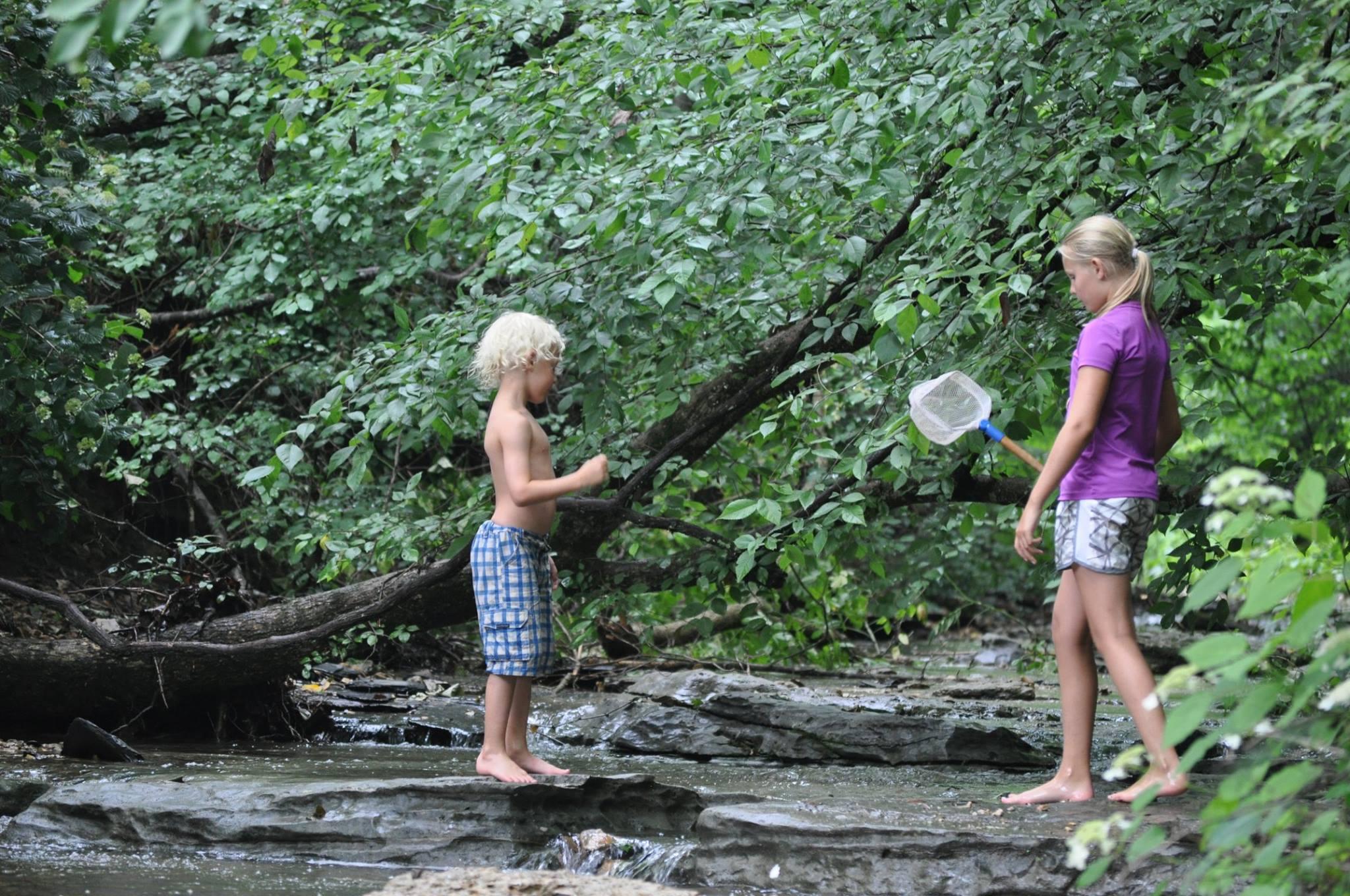 children, kids, play, forest, woods, creek, waterfall